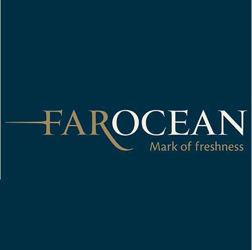Far Ocean Group Logo